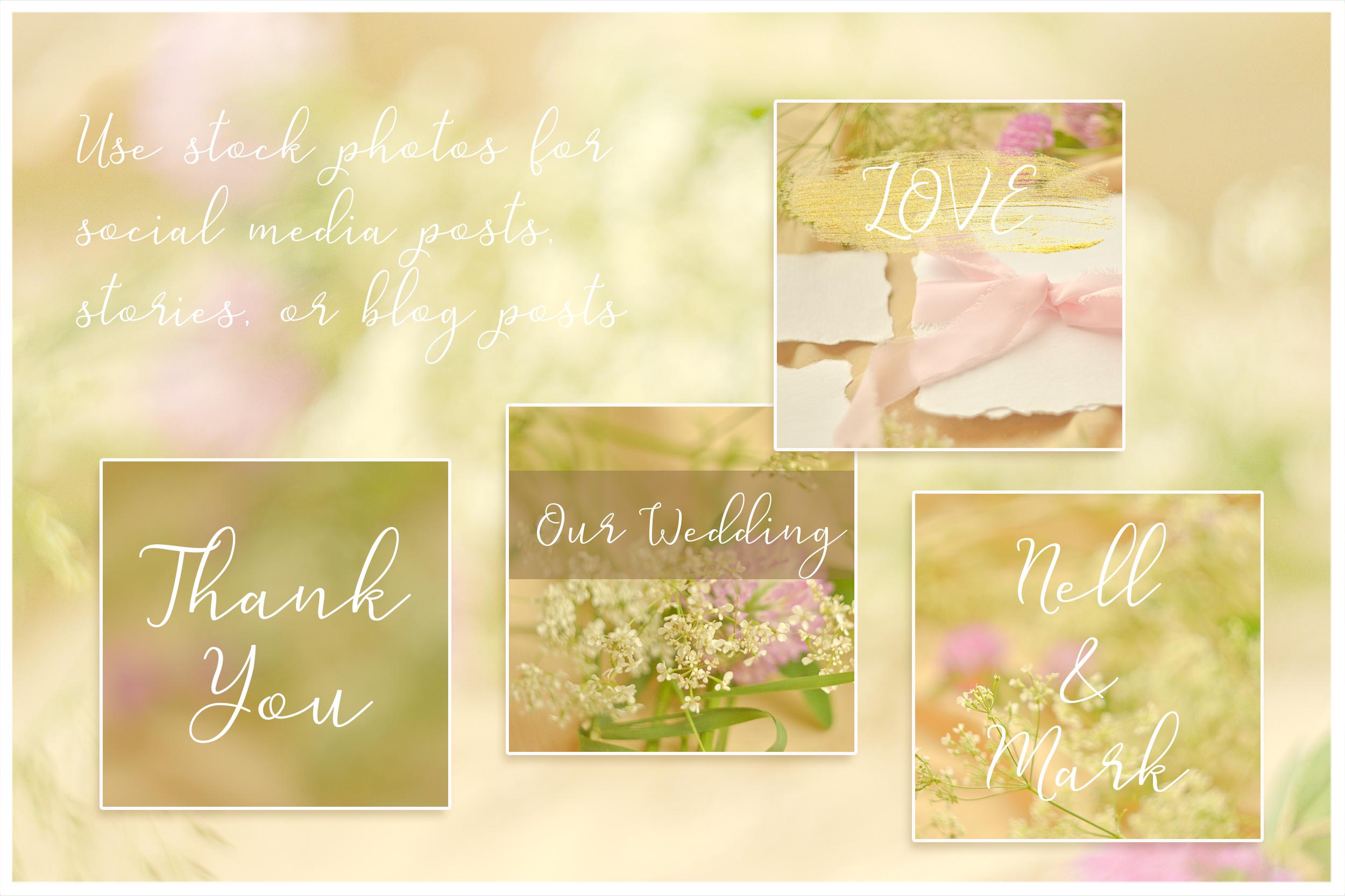 Honey Meadow. Wedding mockups & stock photo bundle example image 4