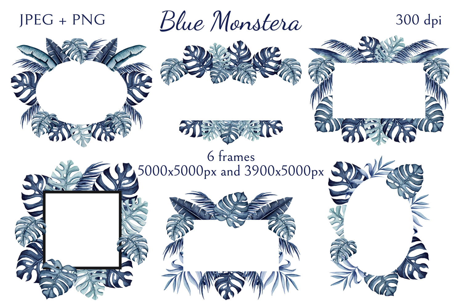 Blue Monstera example image 6