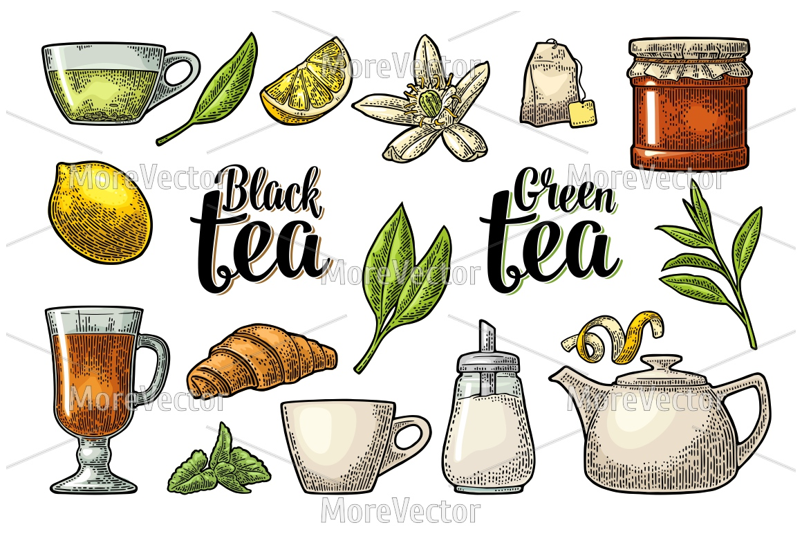 Set tea with lettering. Vector vintage engraving example image 2
