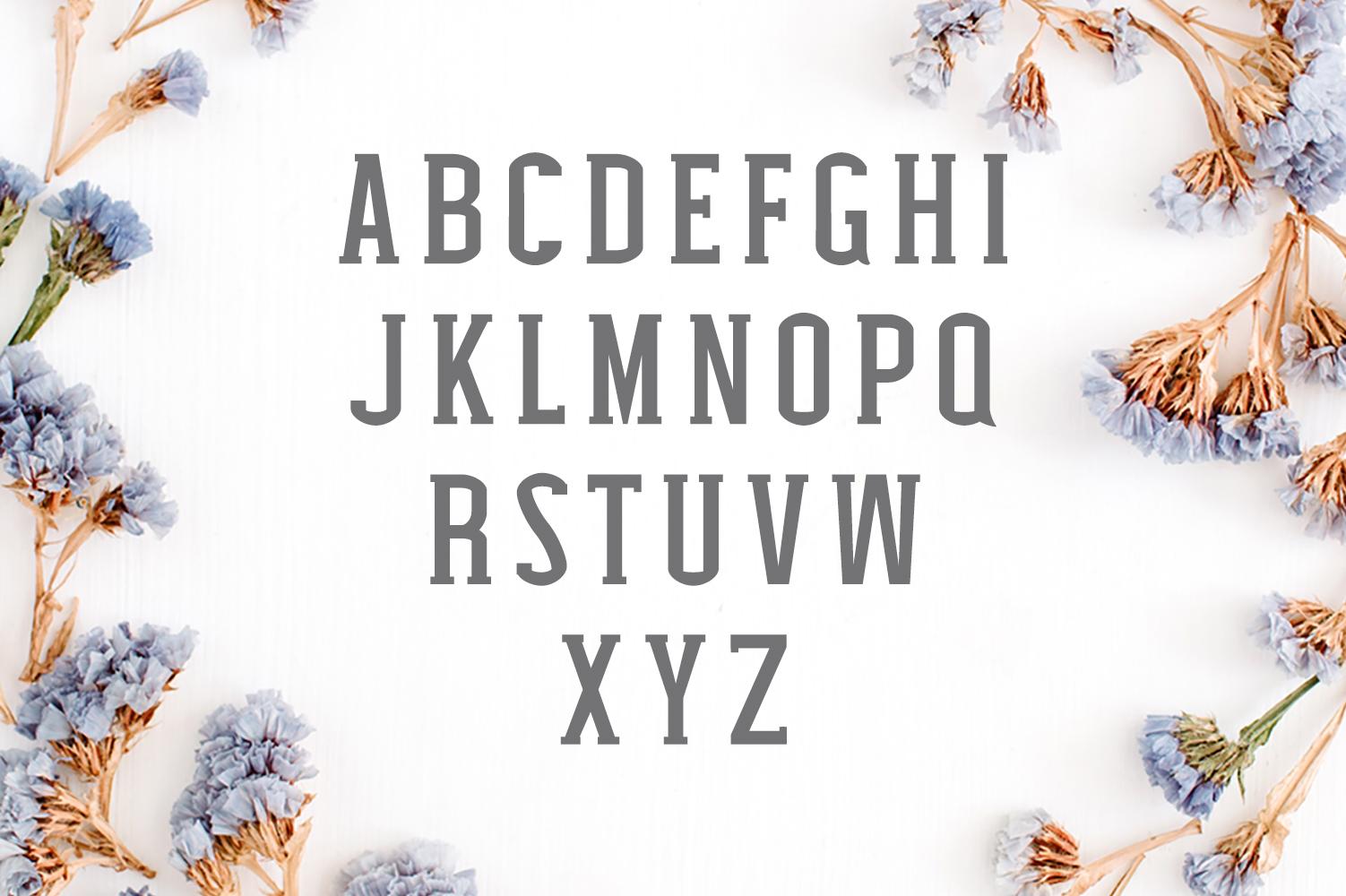 Nasya Slab Serif 4 Font Family Pack example image 6