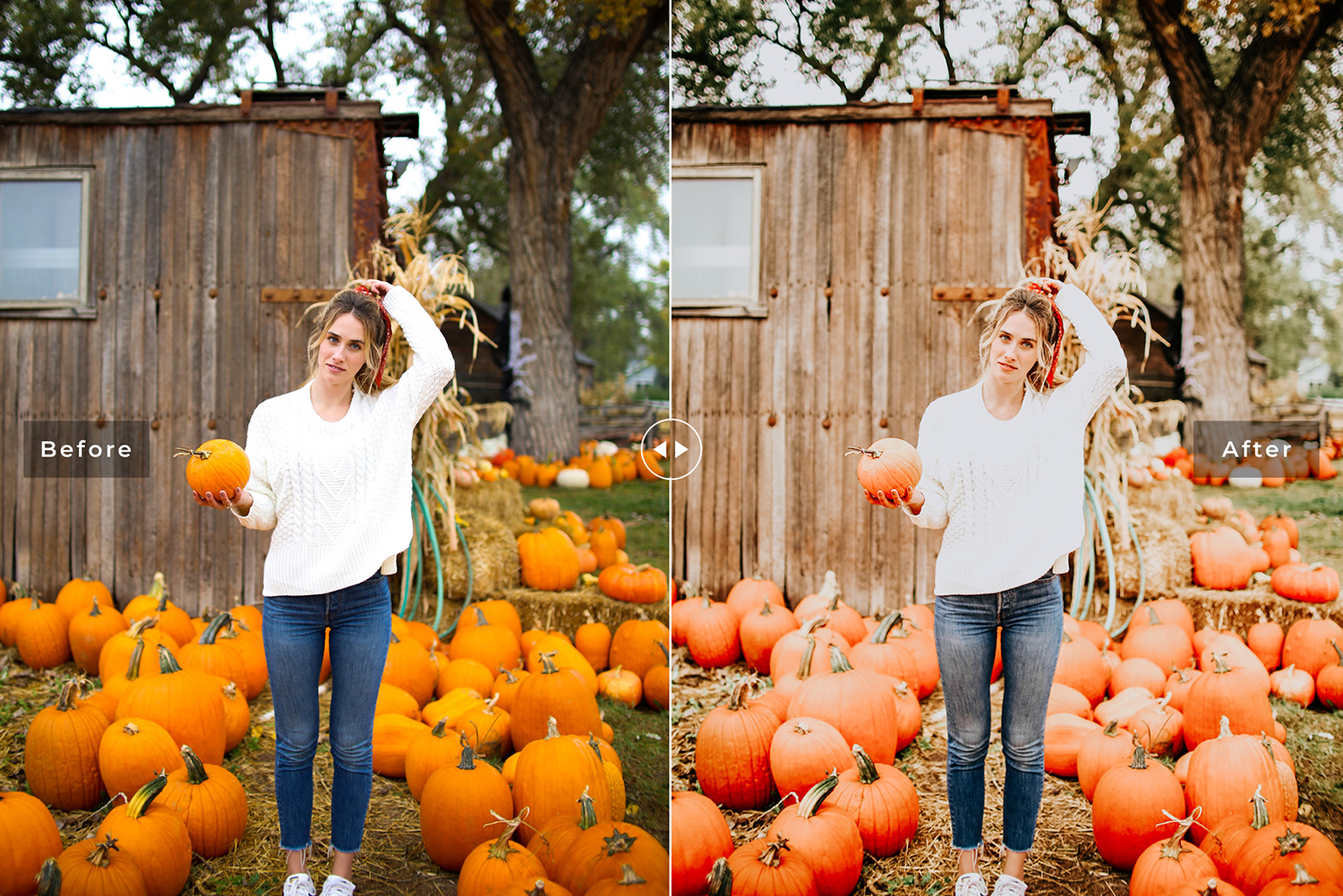 Pumpkin Mobile & Desktop Lightroom Presets example image 6