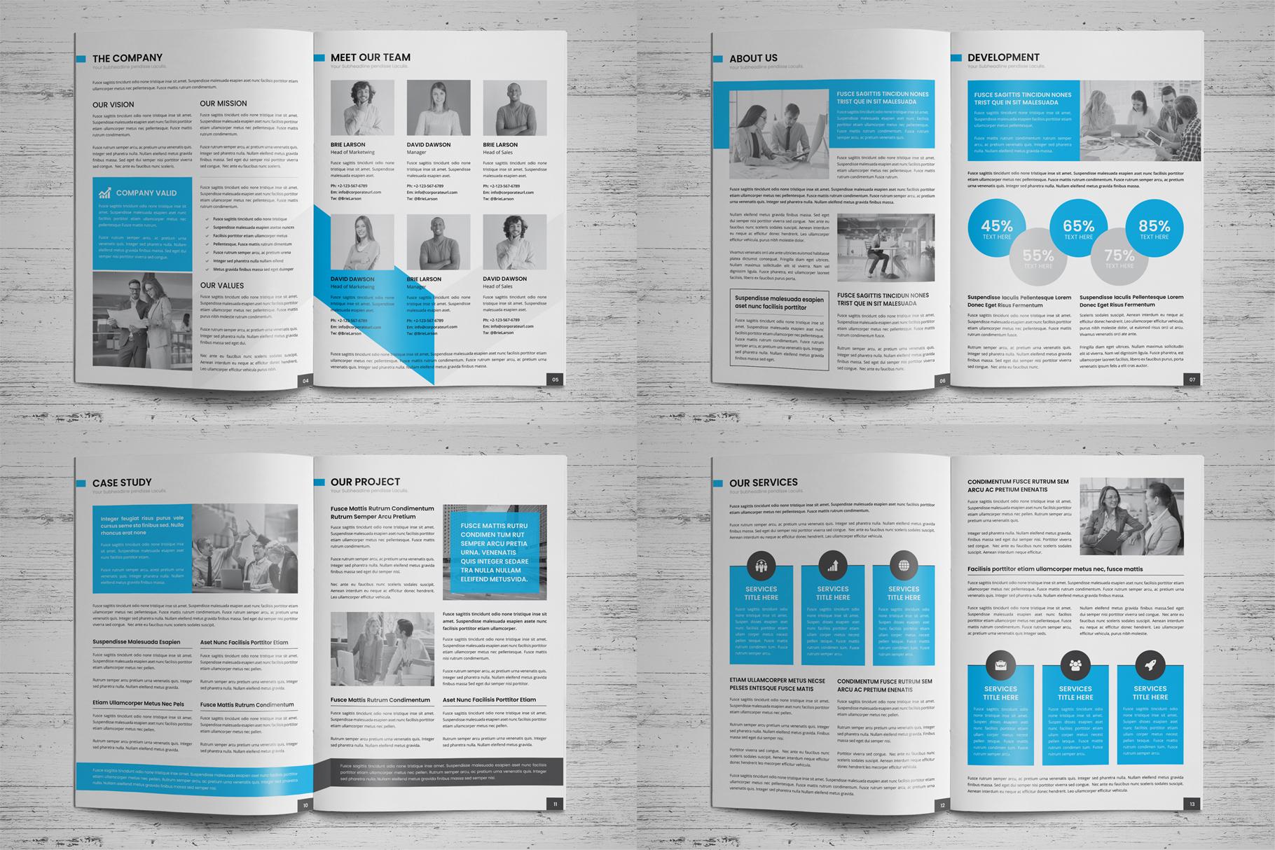 Company Profile Brochure v7 example image 14