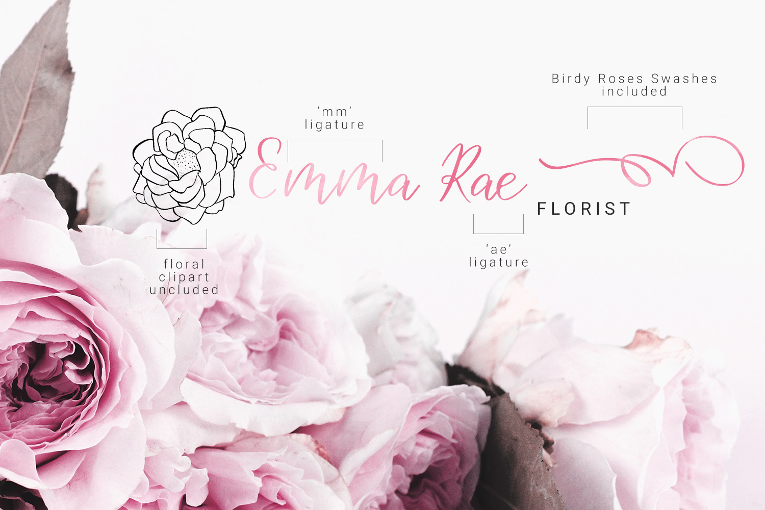 Birdy Roses | Script font and Swashes example image 13