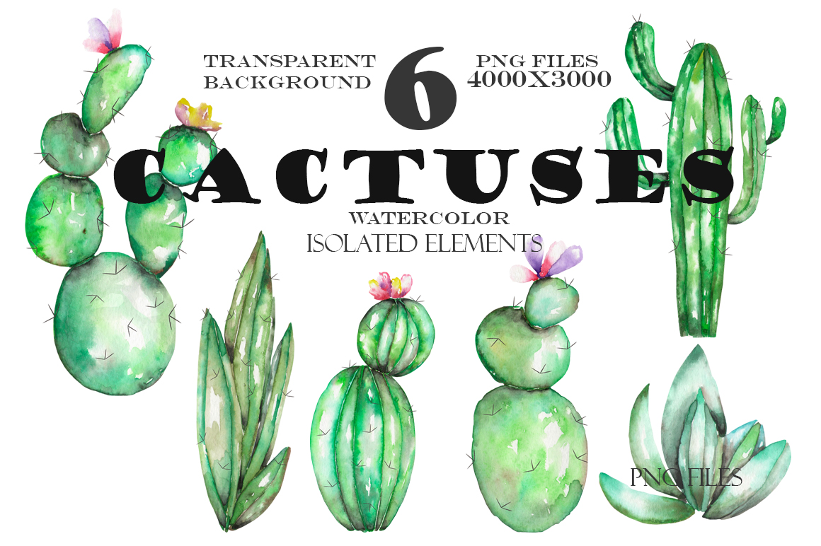 Watercolor Cactuses clipart example image 2