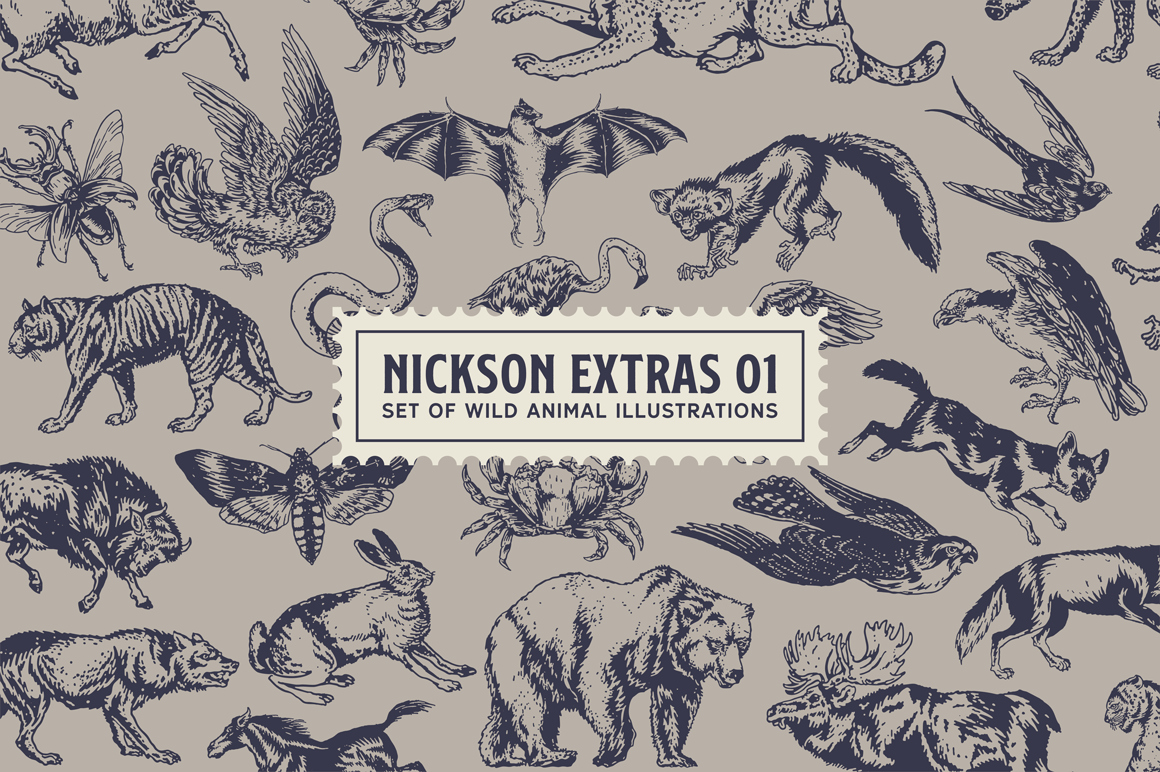 S&S Nickson Font Bundles  example image 2