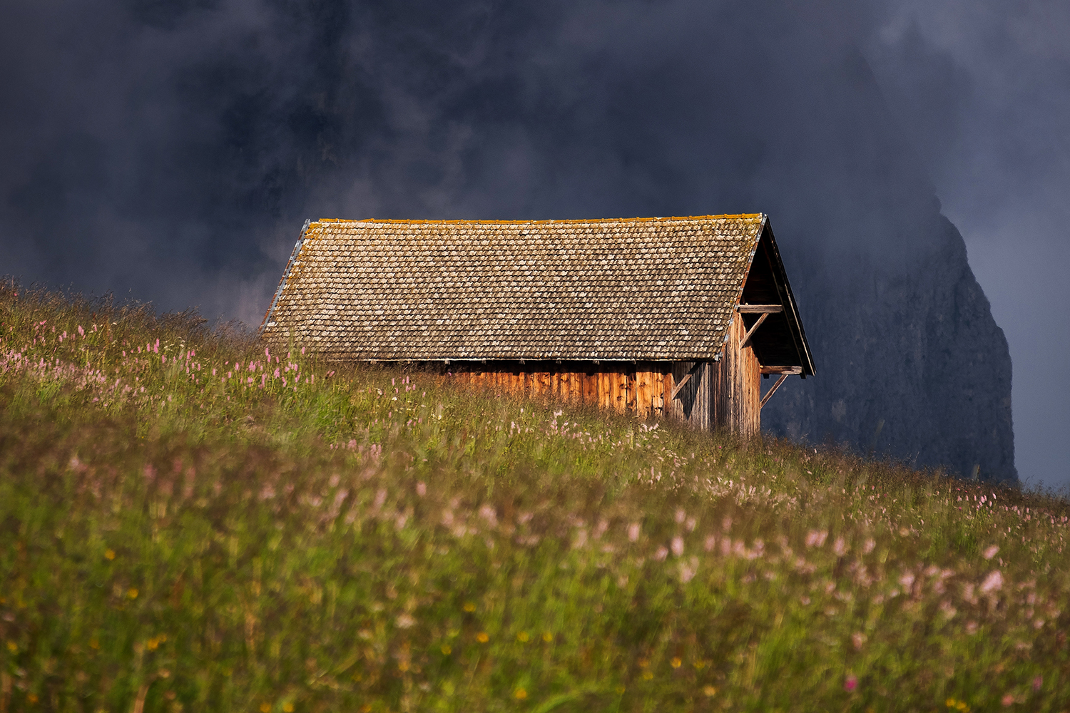 Cottage infront of Seiser Alm example image 1