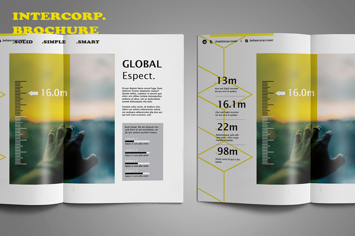 Intercorp Brochure Template example image 4