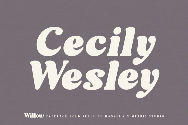 Willow. Typeface Bold Serif example image 9