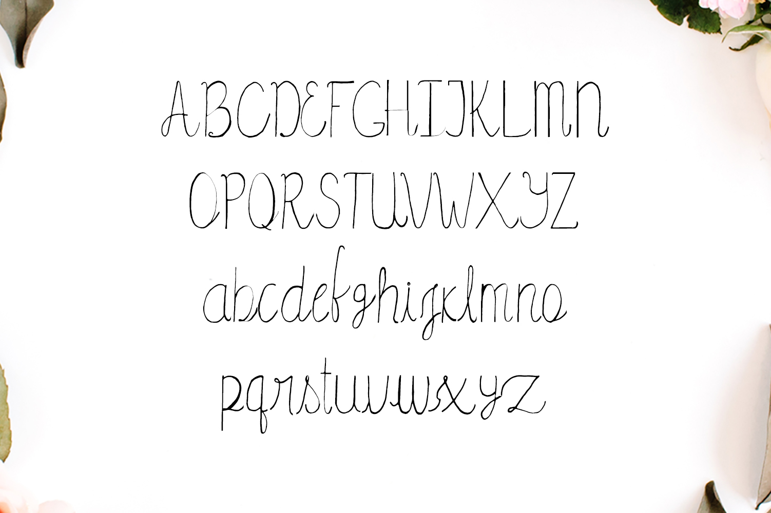 Amidala Script Font example image 2