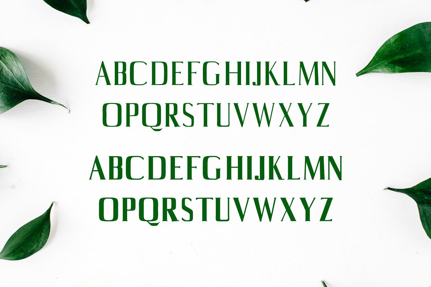 Axell Serif Font Family example image 2