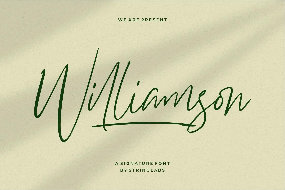 Williamson - Luxury Signature Font example image 1