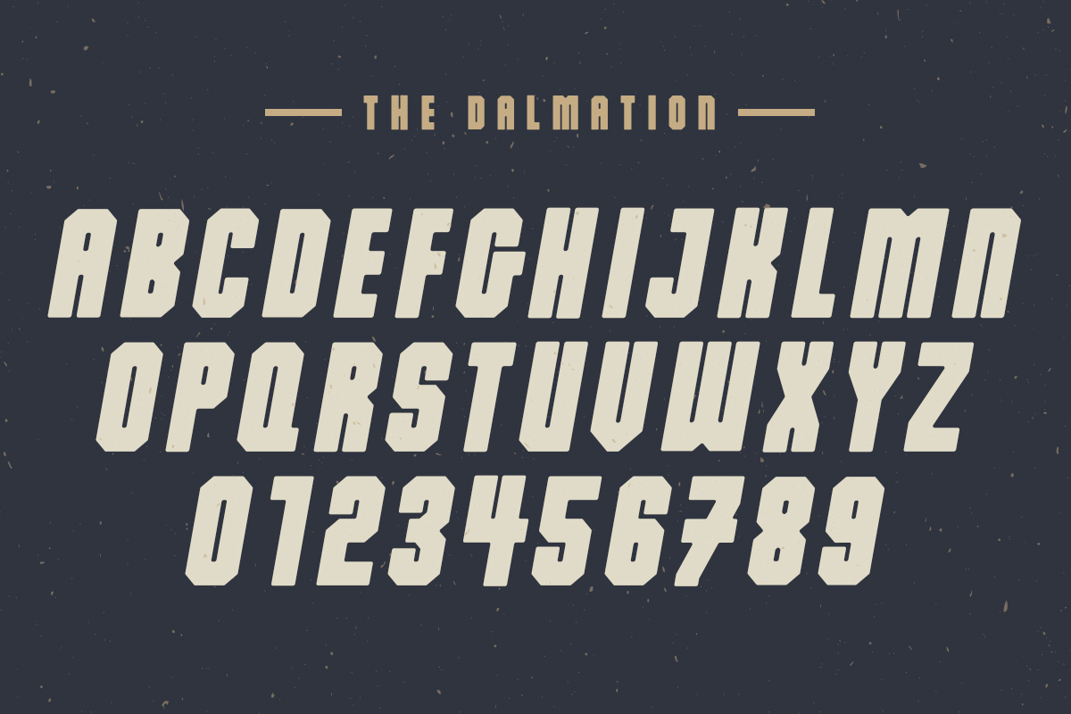 The Dalmation - Font Family example image 6