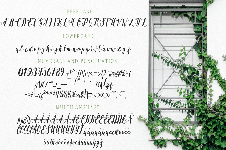 La Vie En Rose Font Duo example image 2