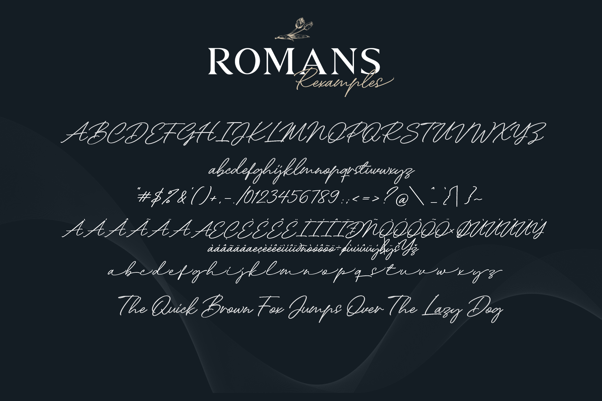 ROMANS Rexamples Font Duo example image 10