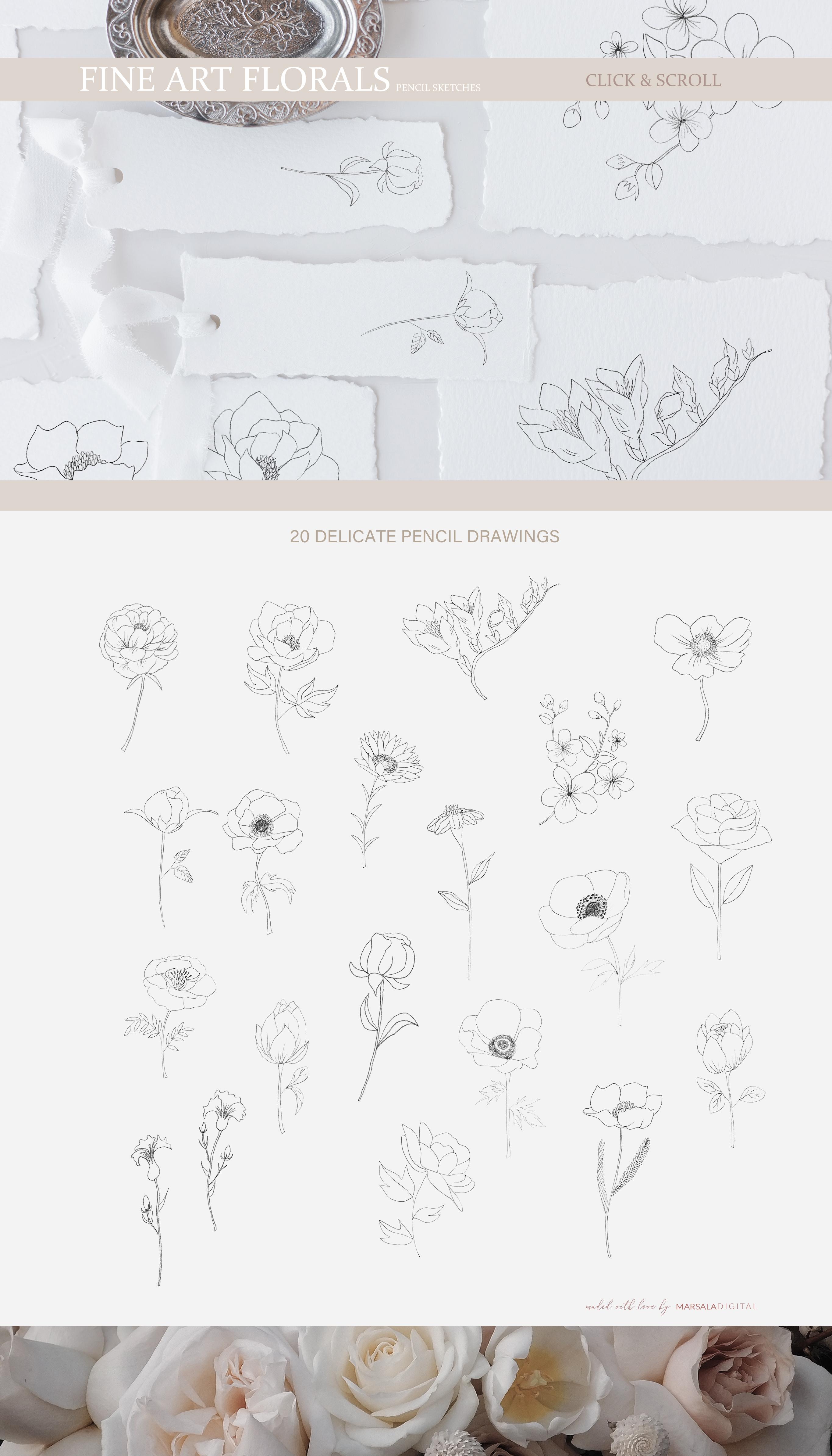 Fine Art Florals - Pencil Sketches example image 4
