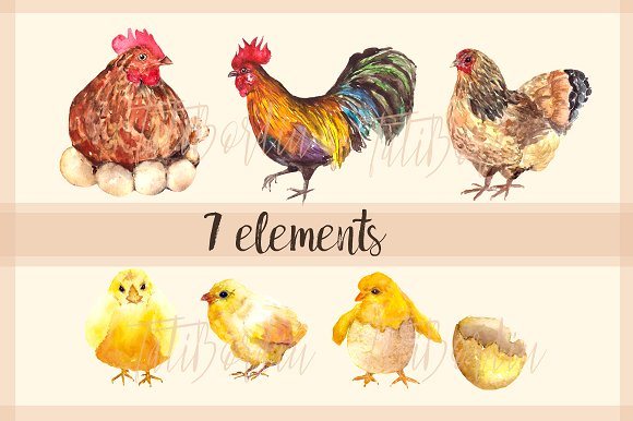 Rooster Family - Watercolor Clip Art example image 3