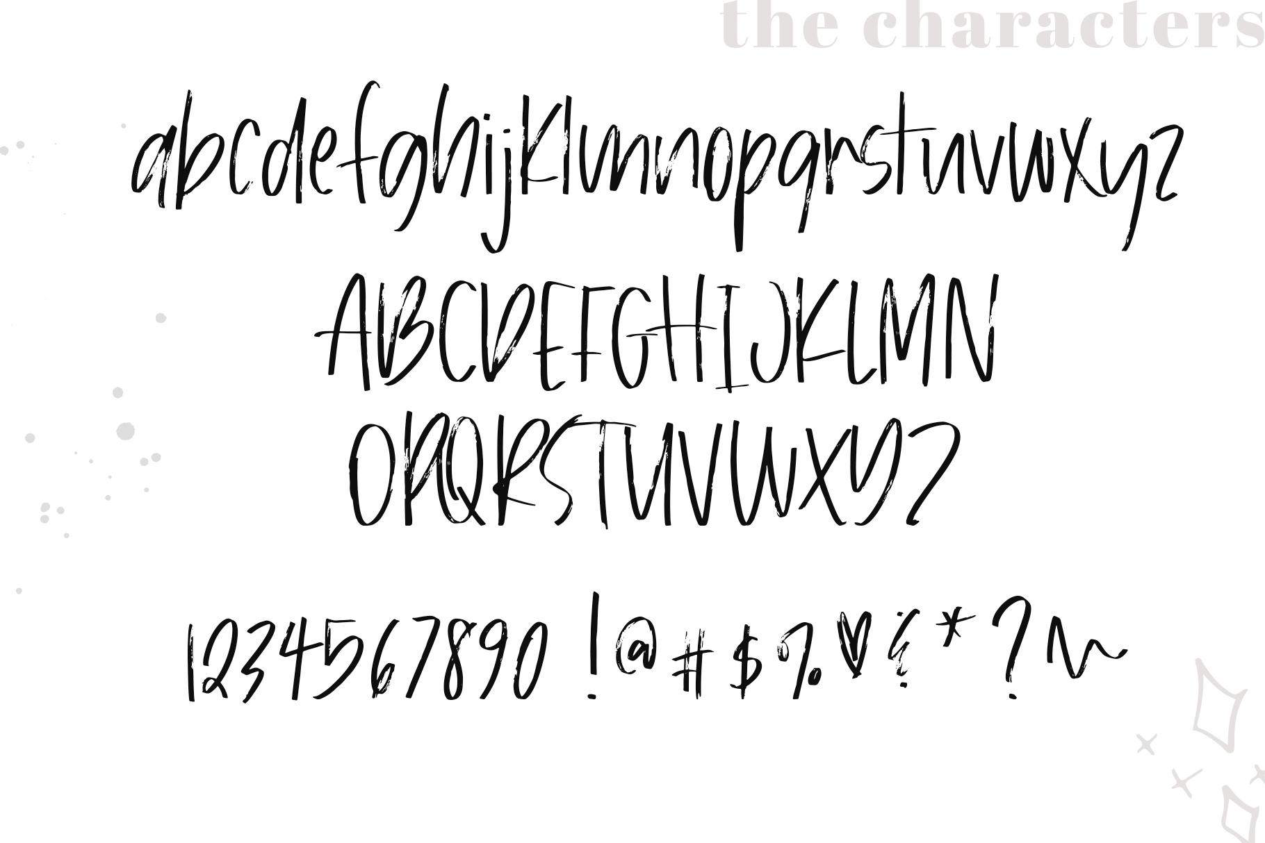 Bloomy - A Handwritten Brush Font example image 9