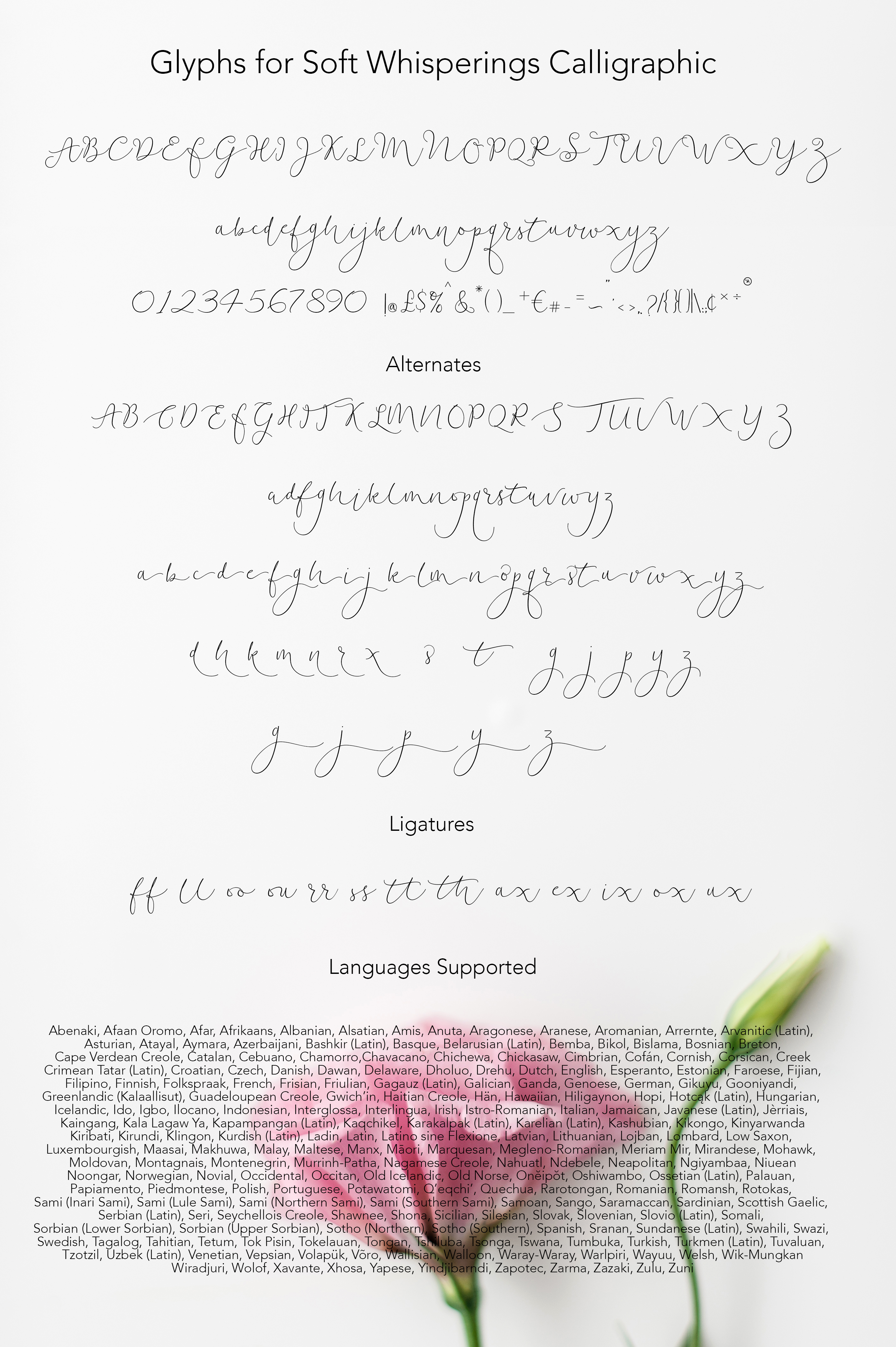 Soft Whisperings Calligraphic example image 6