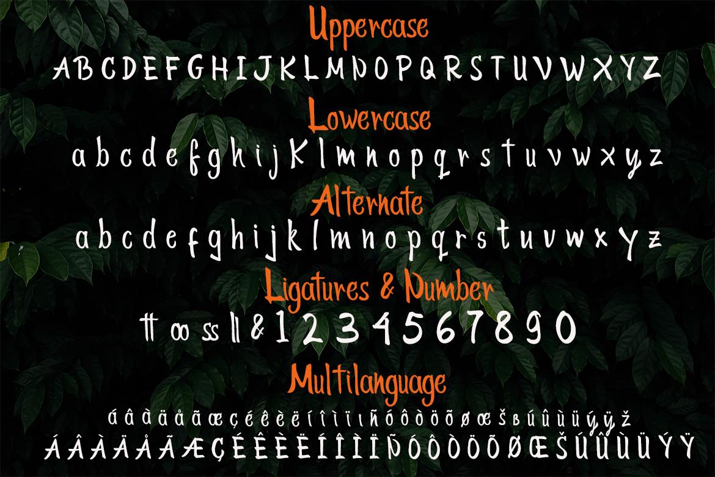 Tokyo Street - Handwritten Typeface example image 7