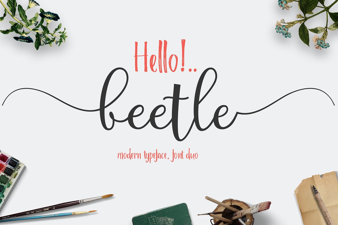 Beettle FontDuo example image 1