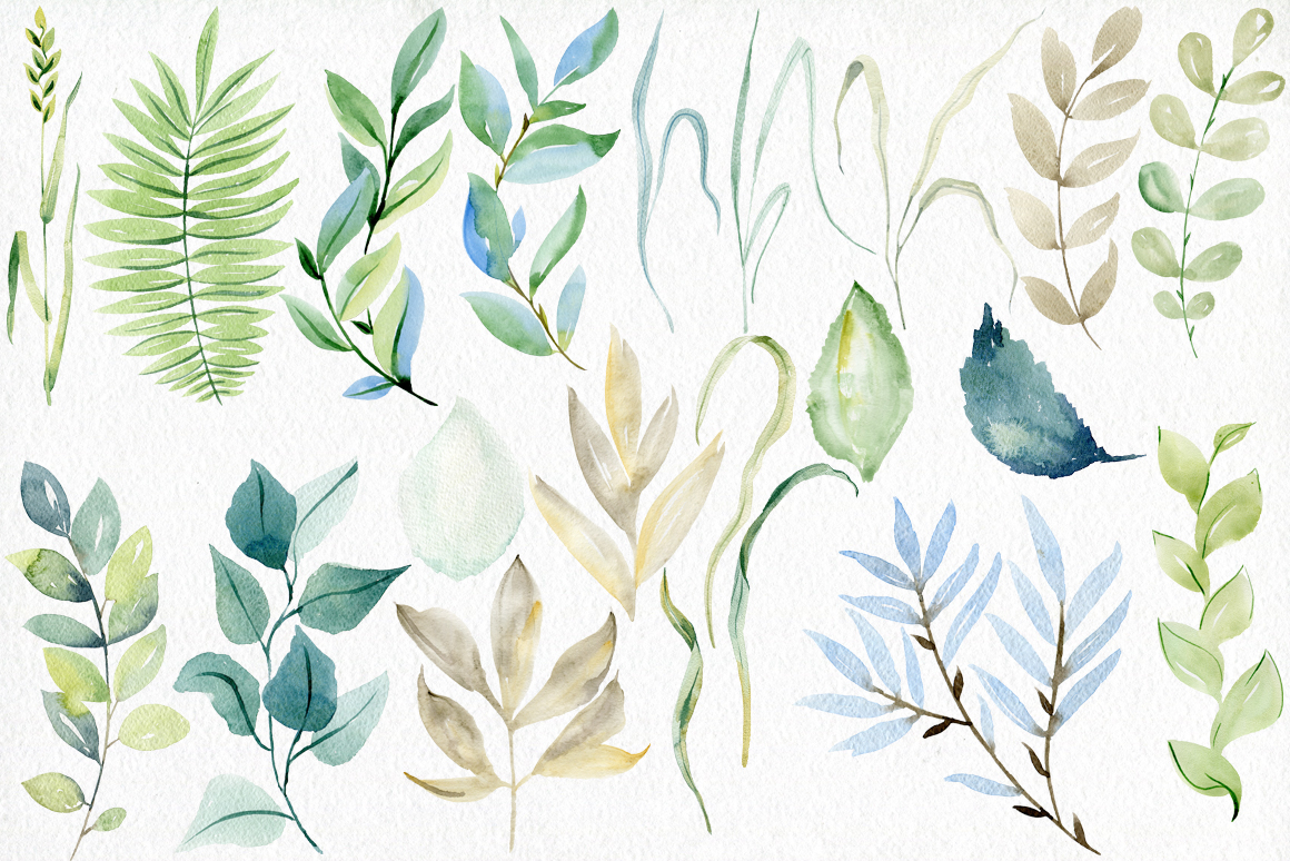 Watercolor leaves clipart. example image 5