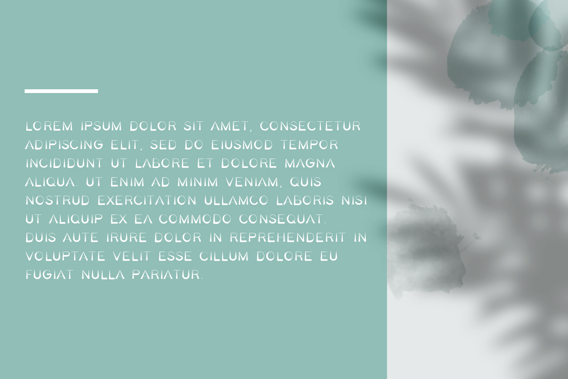 Bella Serif Font Family example image 6