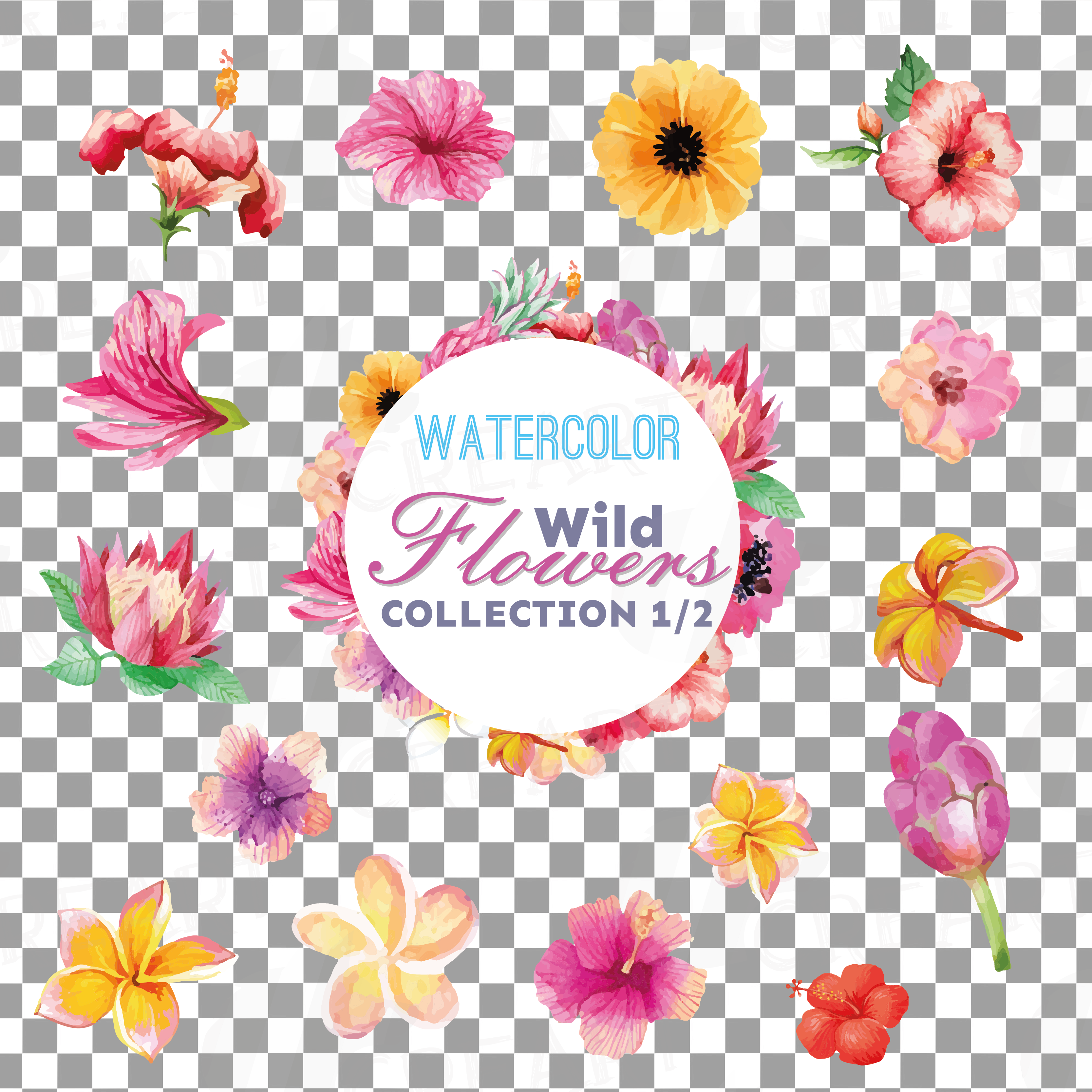 Watercolor wild flowers clip art pack, exotic watercolor flowers valentine clip art. Eps, png, jpg, svg,  vector files included. Part 1/2 example image 5
