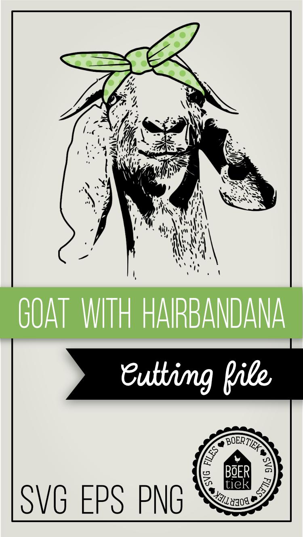 Goat with hair bandana example image 6