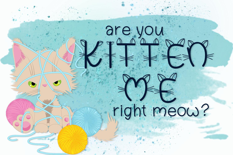 Kitten Farts example image 2
