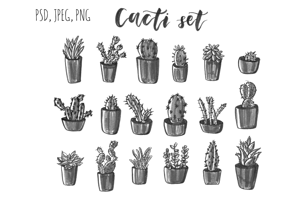 Cacti hand drawn set. example image 2