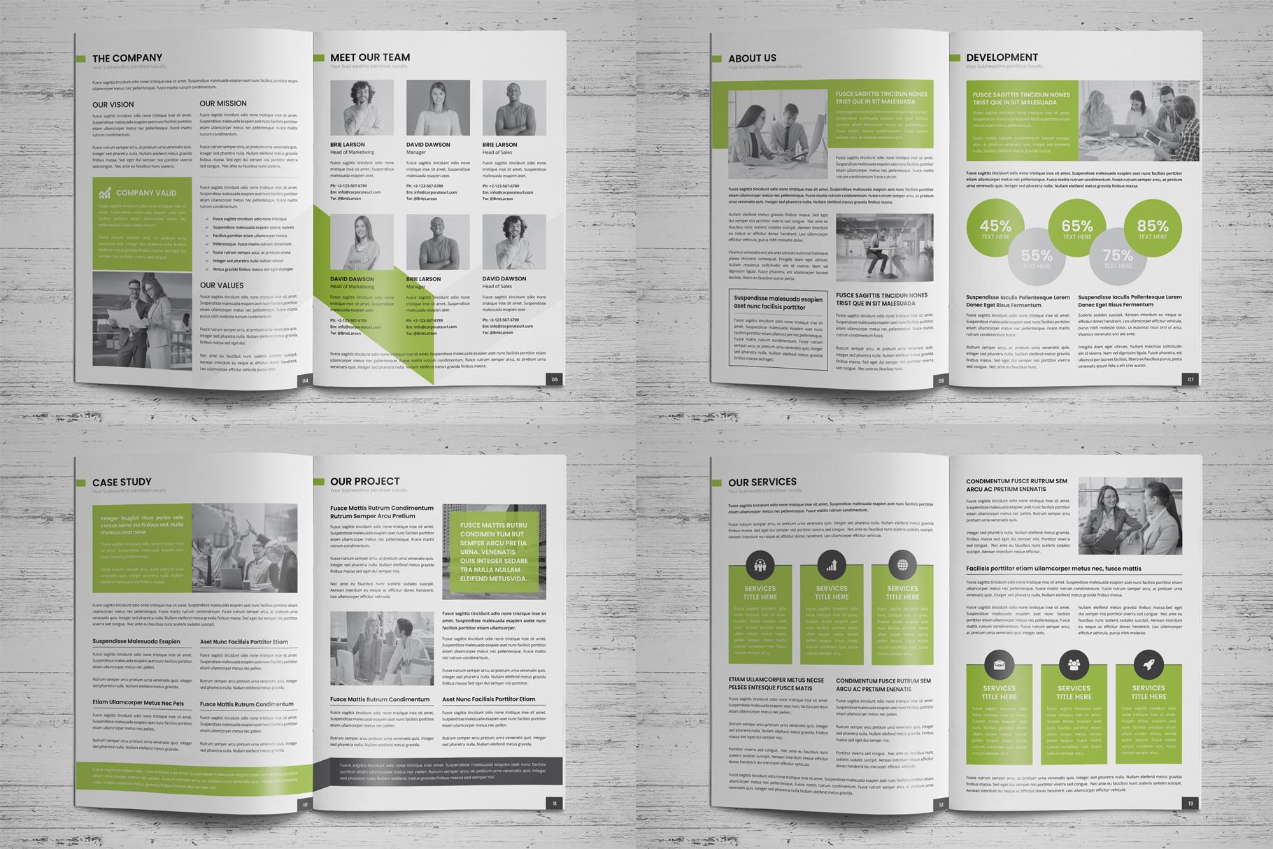 Company Profile Brochure v7 example image 17