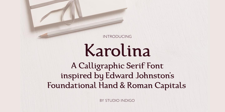 Karolina Serif Font example image 10