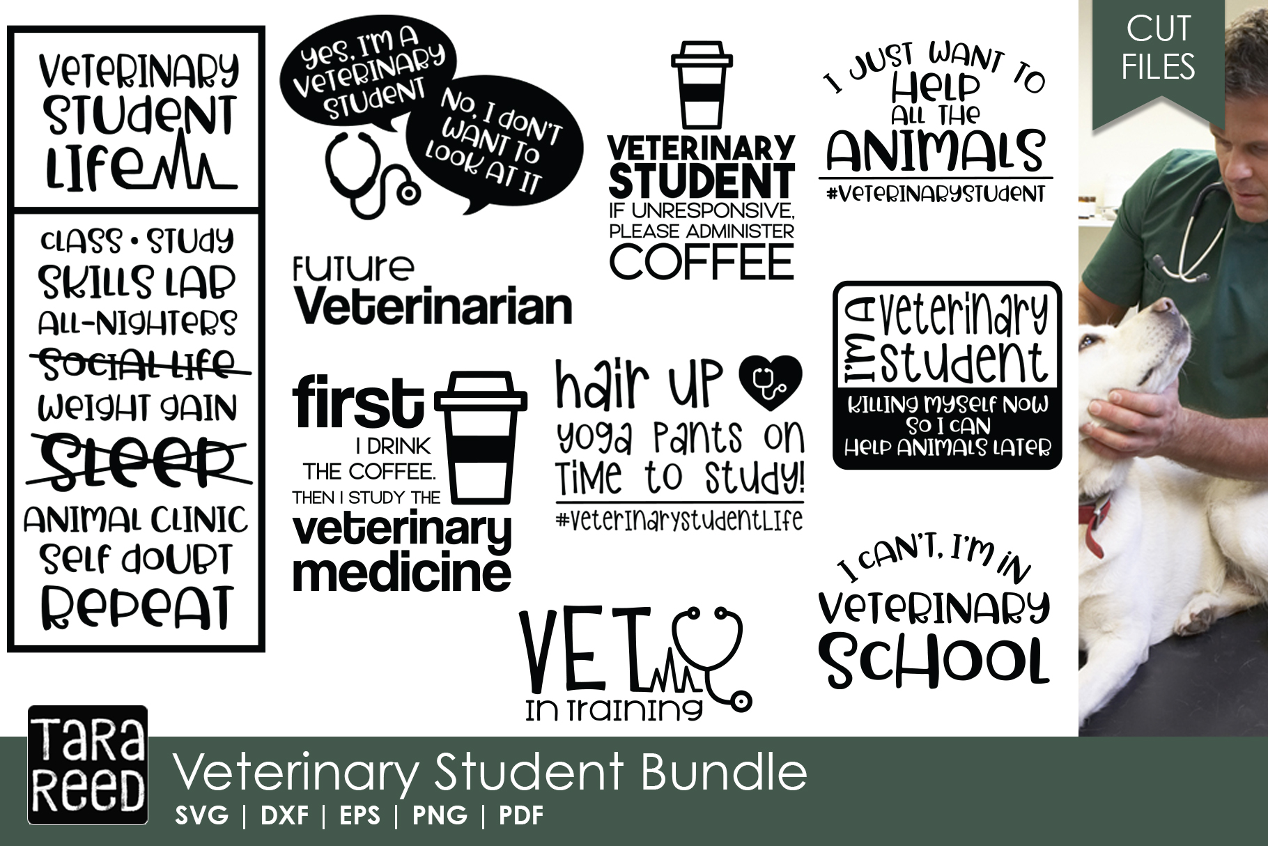 Veterinary Student SVG and Cut Files for Crafters example image 1