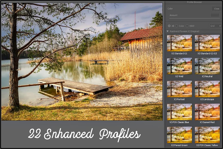 Foveon X3 Inspired profiles LR 7.3 ACR 10.3 example image 2