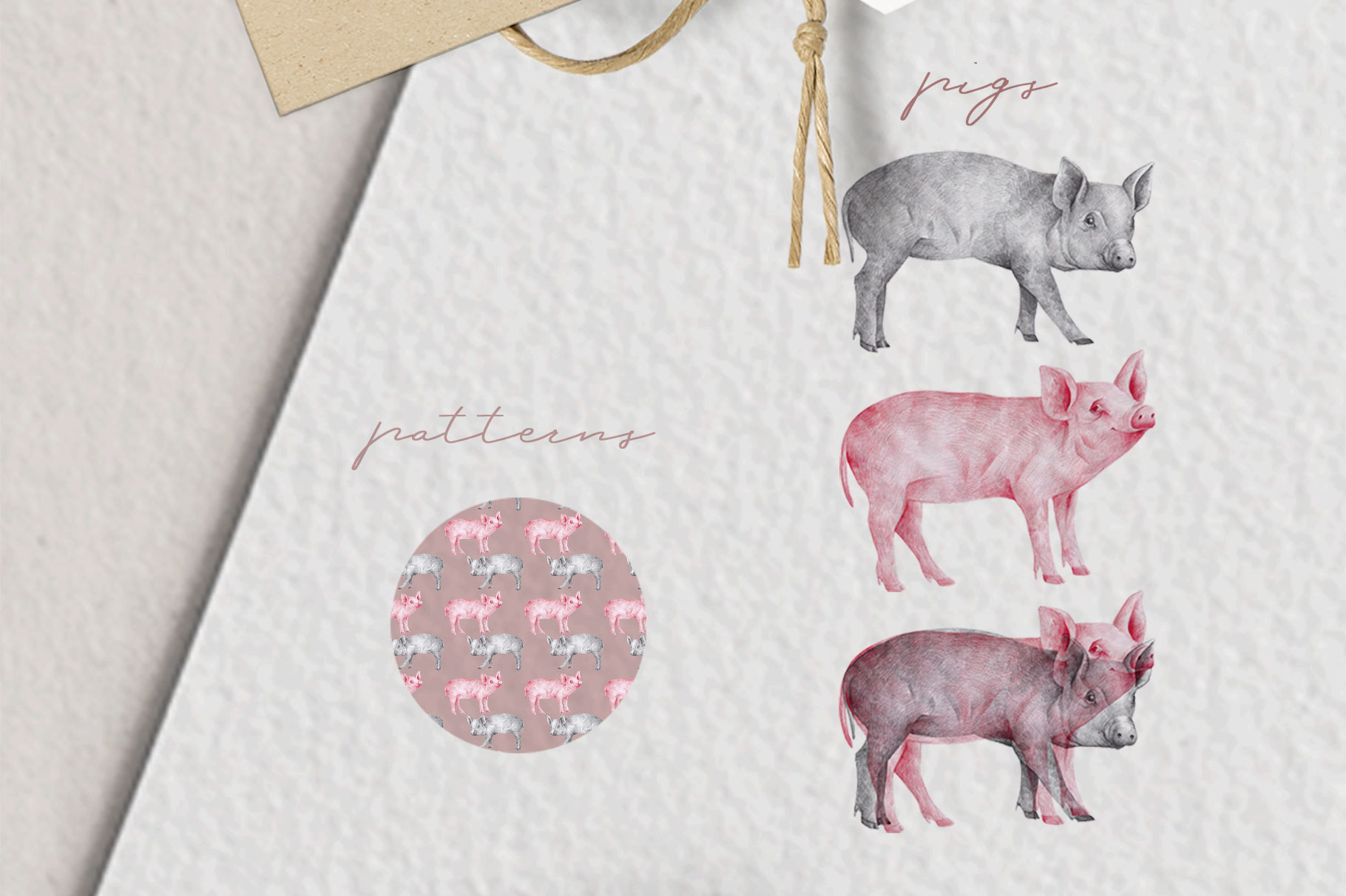 Hand drawn Illustrations Pigs example image 3