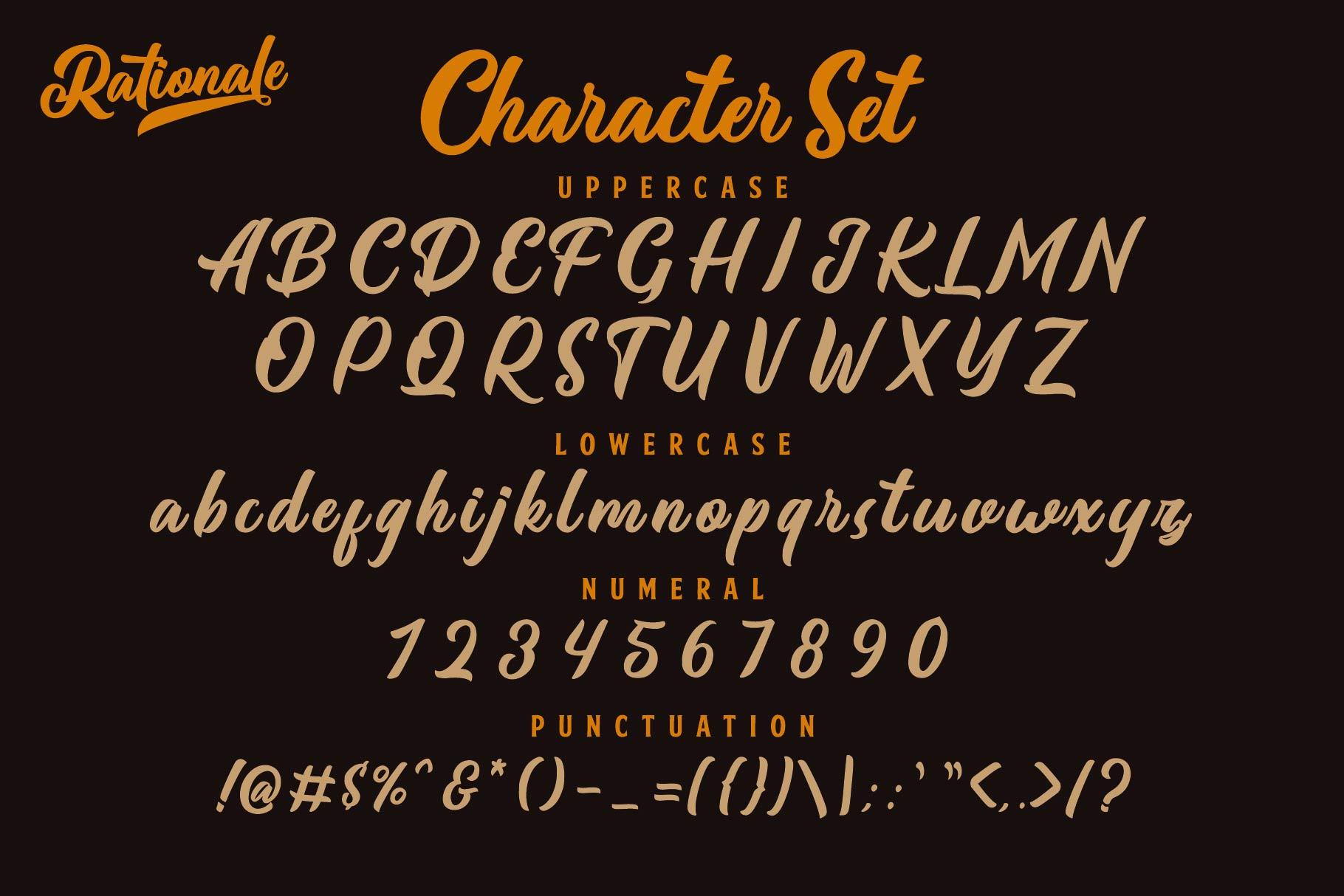 Rationale Vintage Script Font example image 6