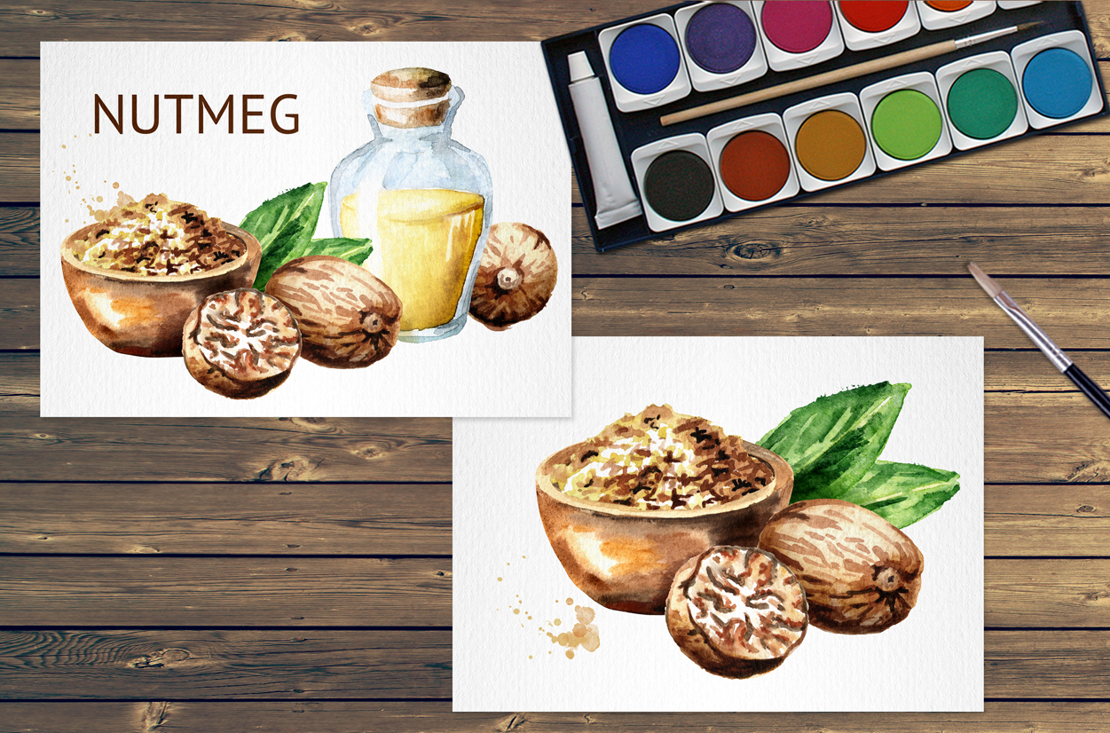 Nutmeg. Watercolor collection example image 5