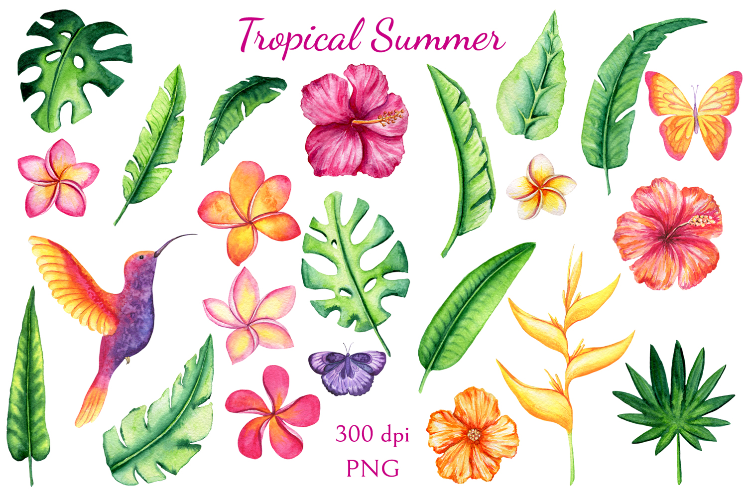 Tropical Summer example image 3
