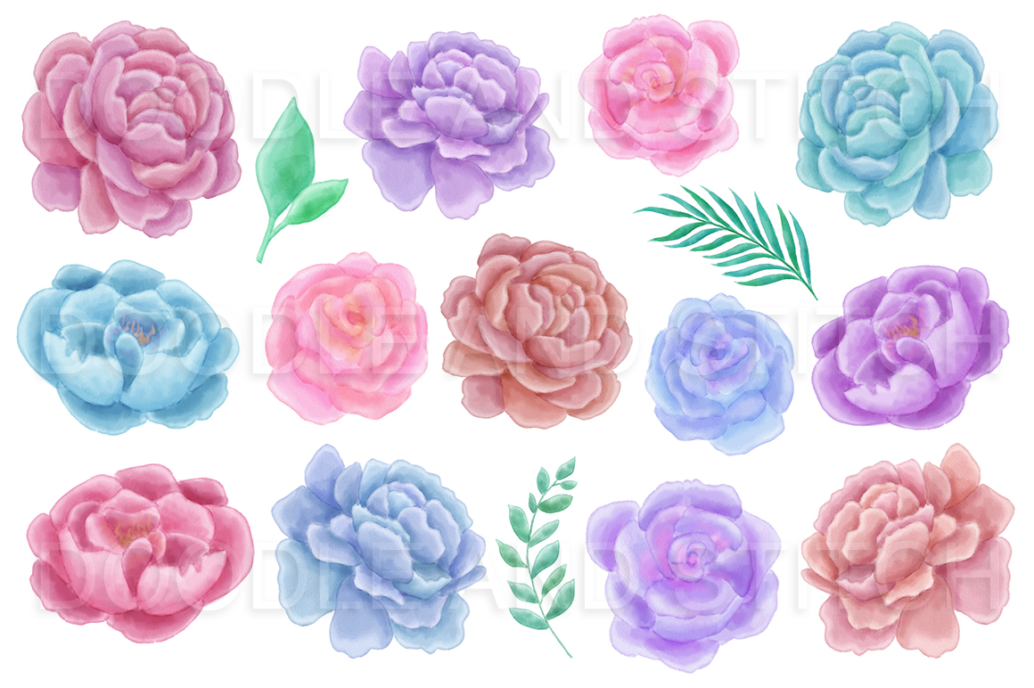 Peony Flower Watercolor Illustrations example image 4