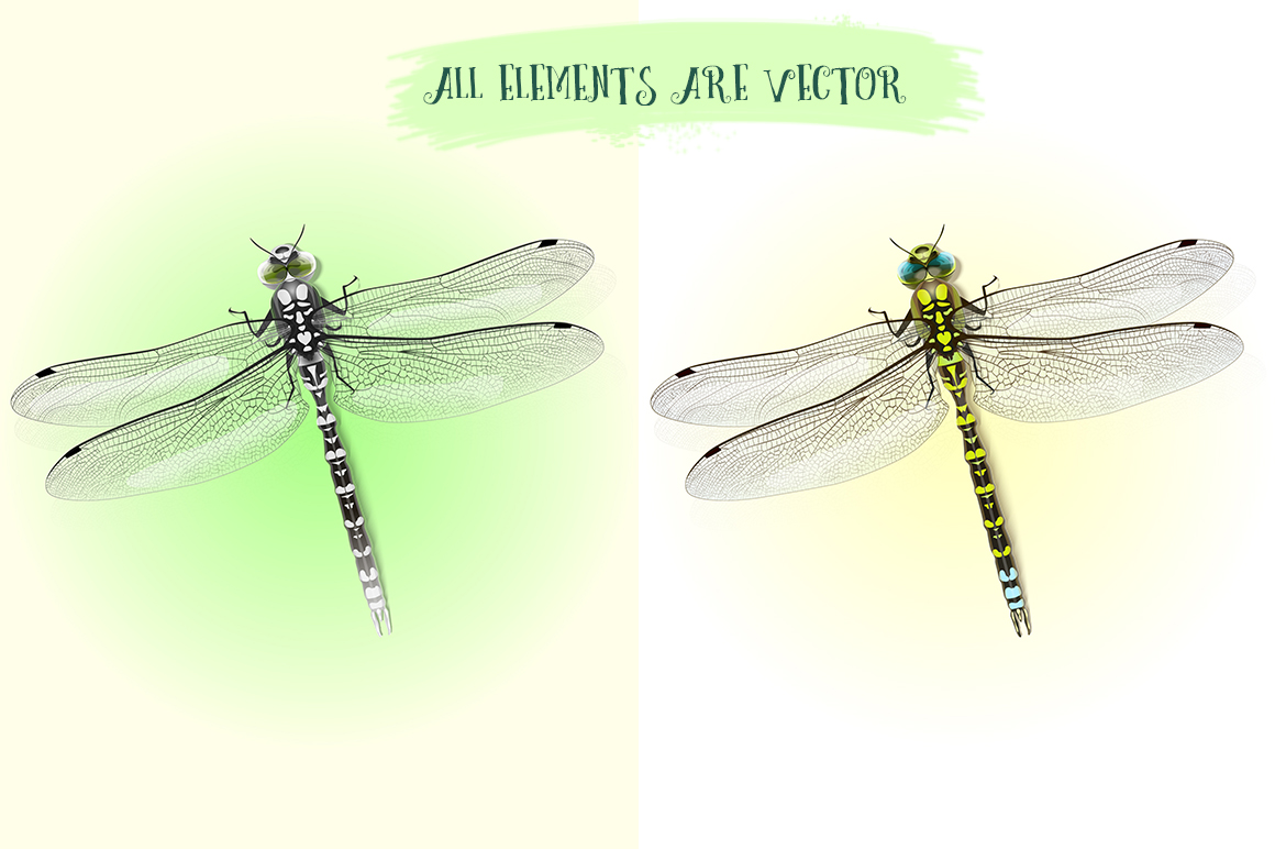 Dragonfly inspiration example image 3