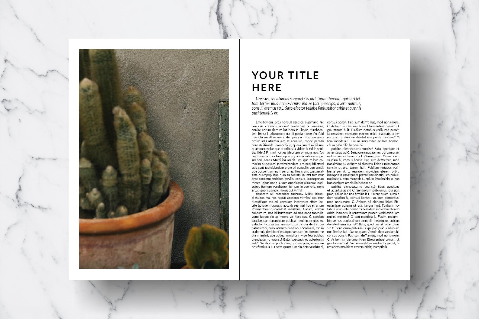 Magazine Template Vol. 15 example image 11