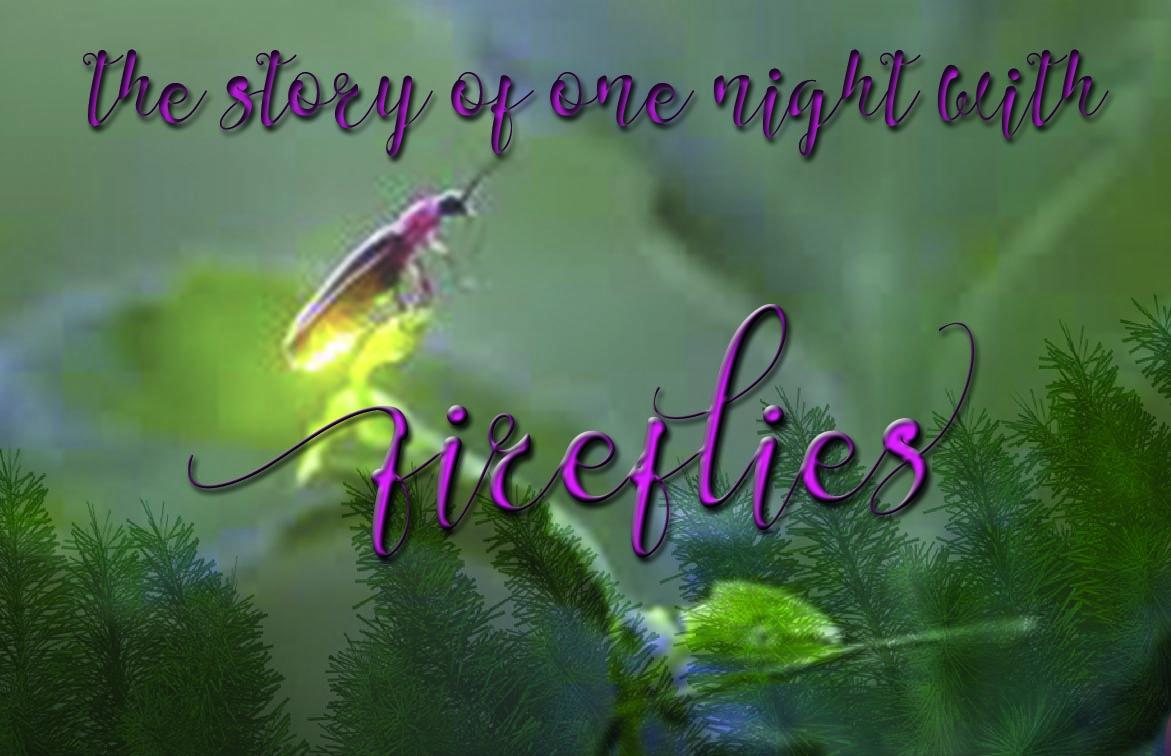 Firefly example image 2
