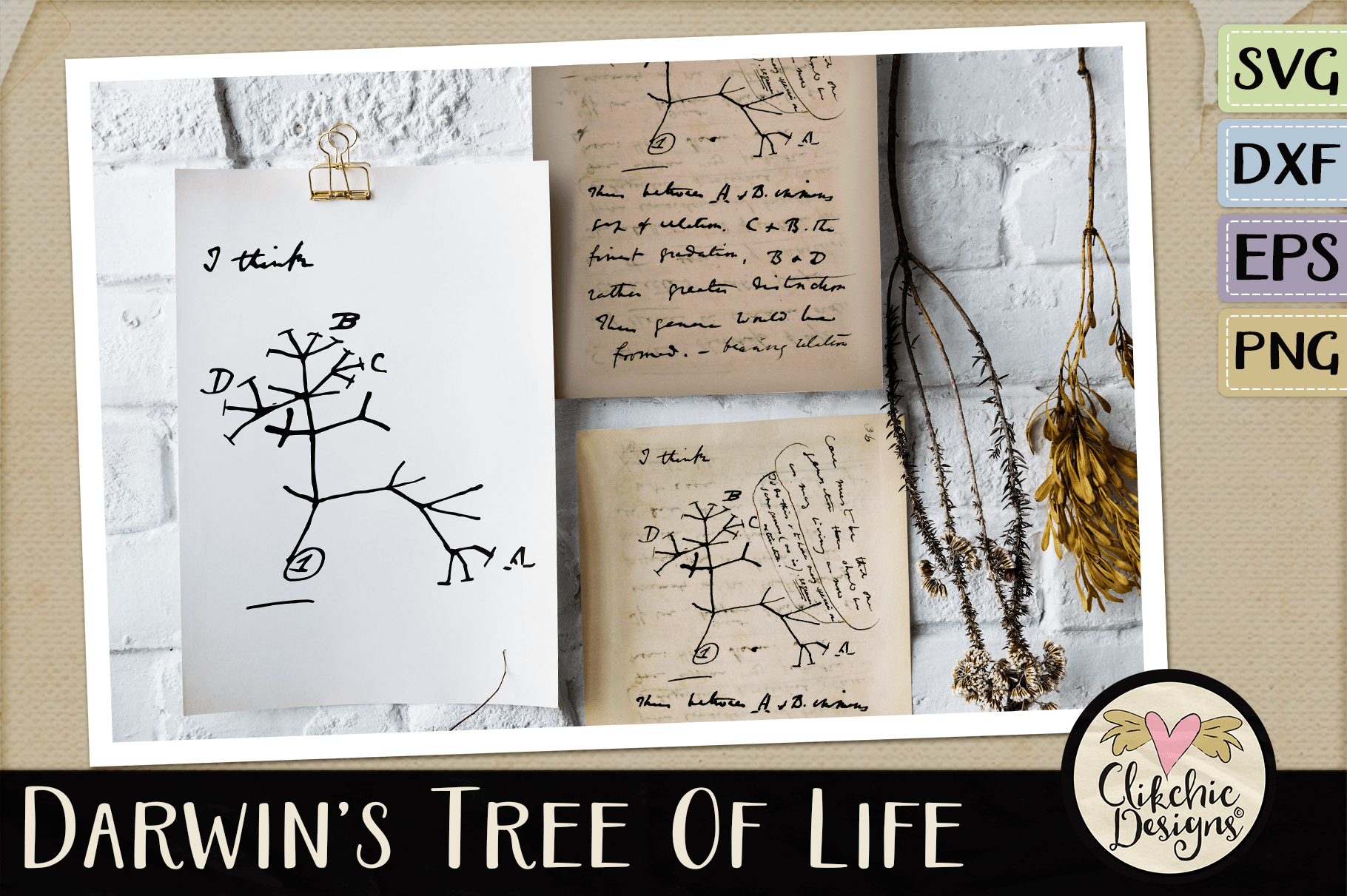 Darwin's Evolutionary Tree of Life SVG Cutting File example image 3