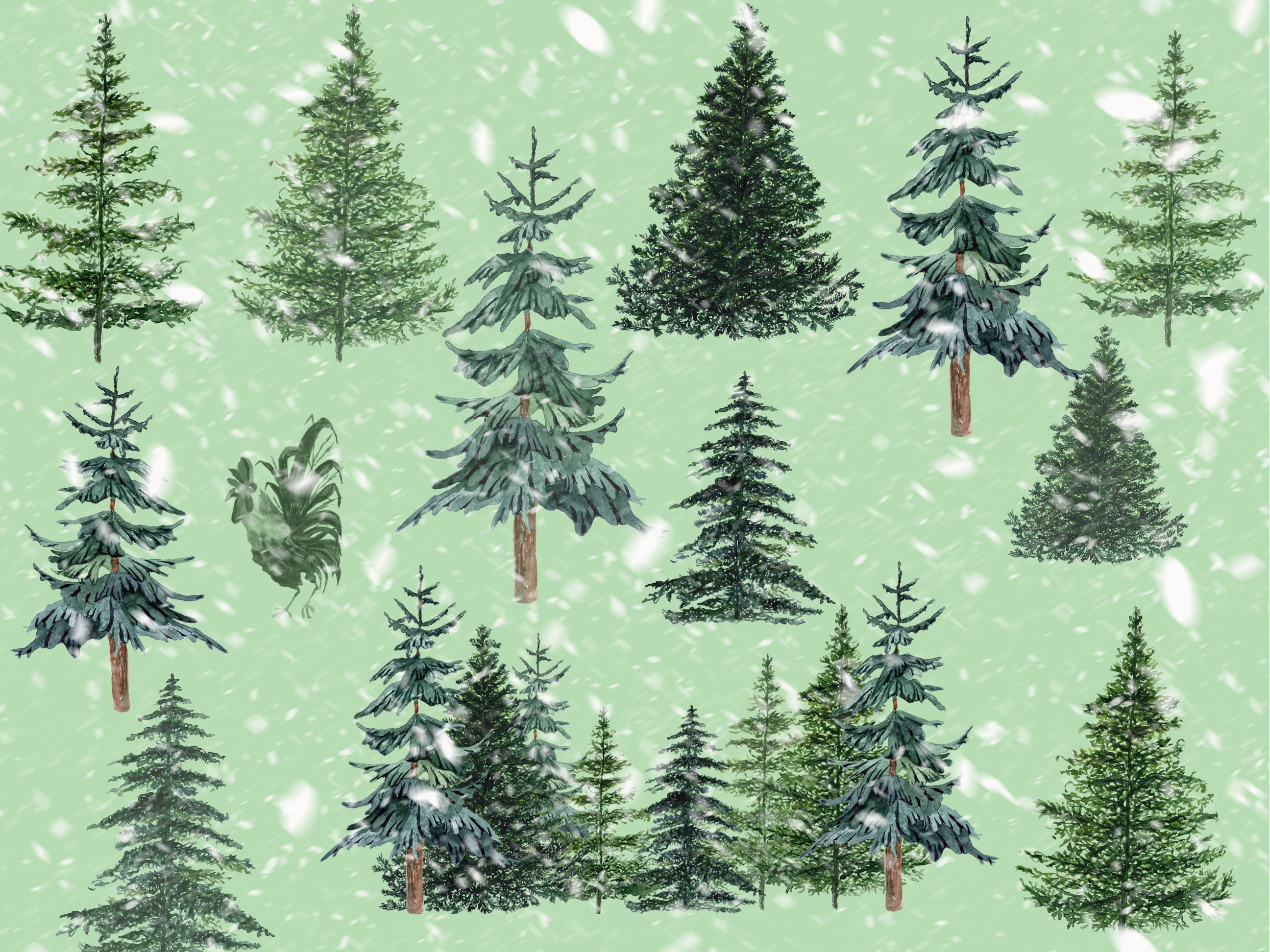 Conifers trees clipart example image 4