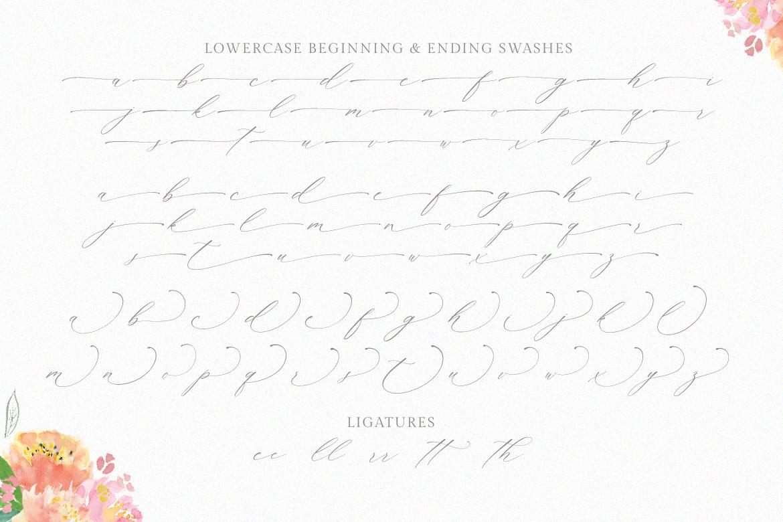 Planolla | Modern Calligraphy example image 8