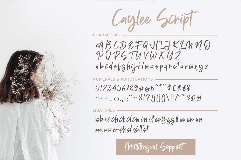 Caylee Script example image 9