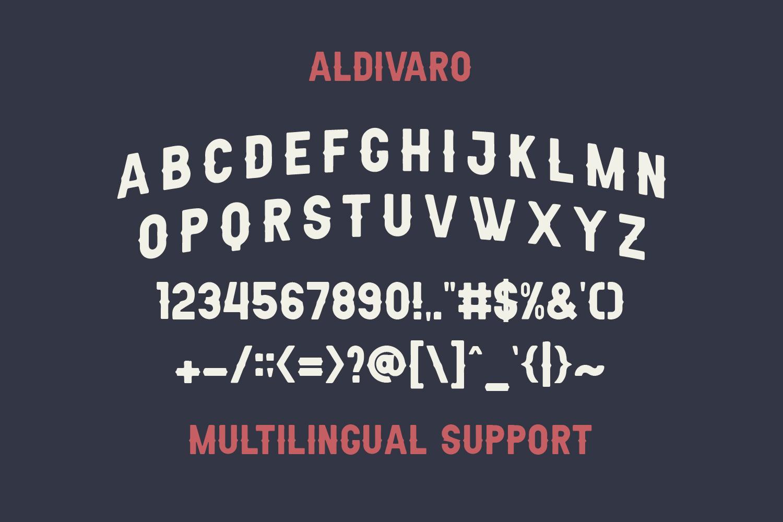 Aldivaro Font Family example image 7