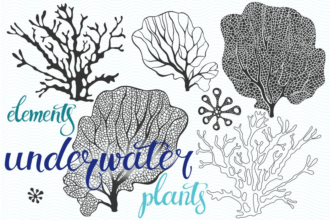 Underwater plants. Graphic set. example image 4