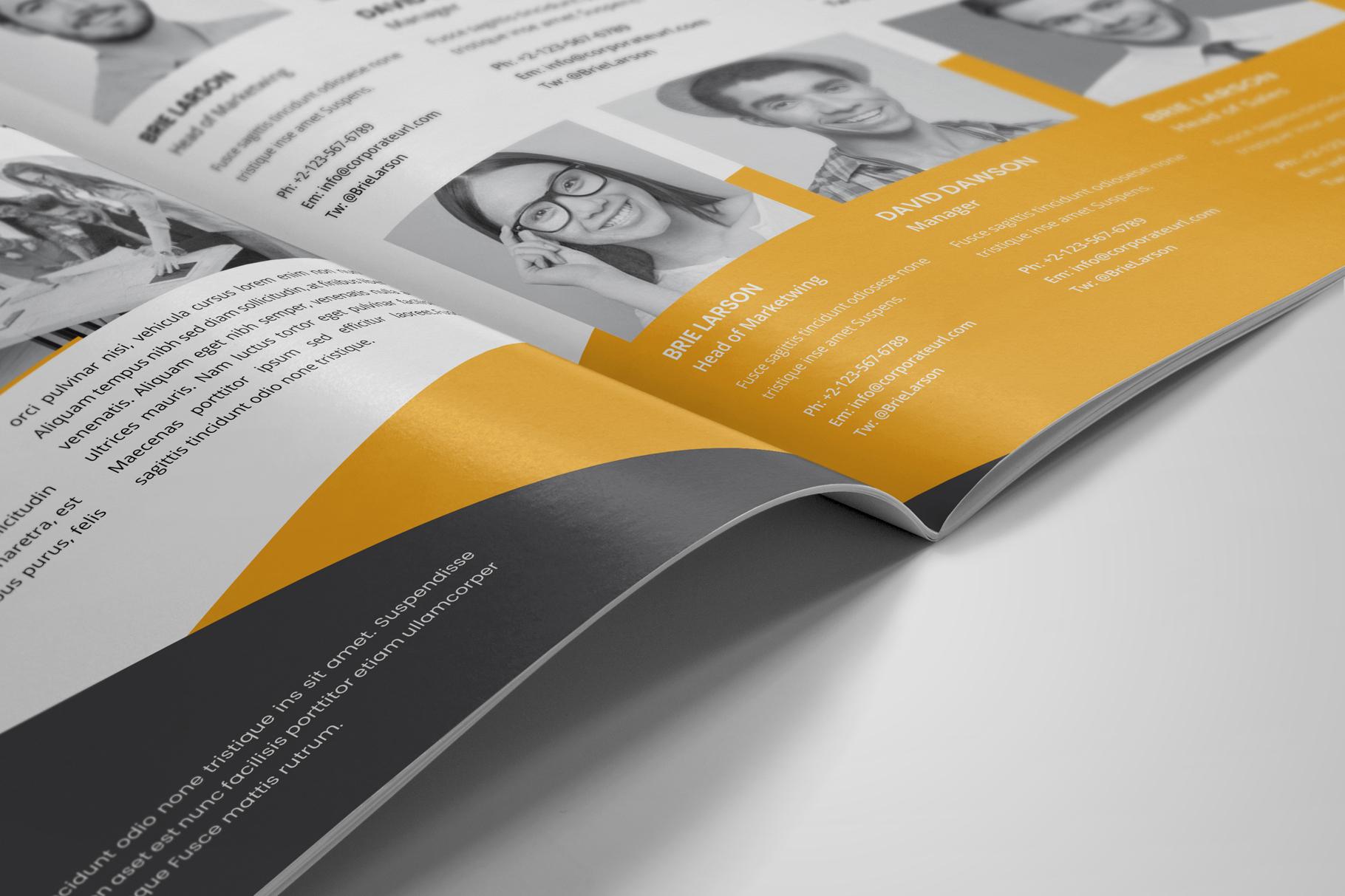 Company Profile Brochure v8 example image 5