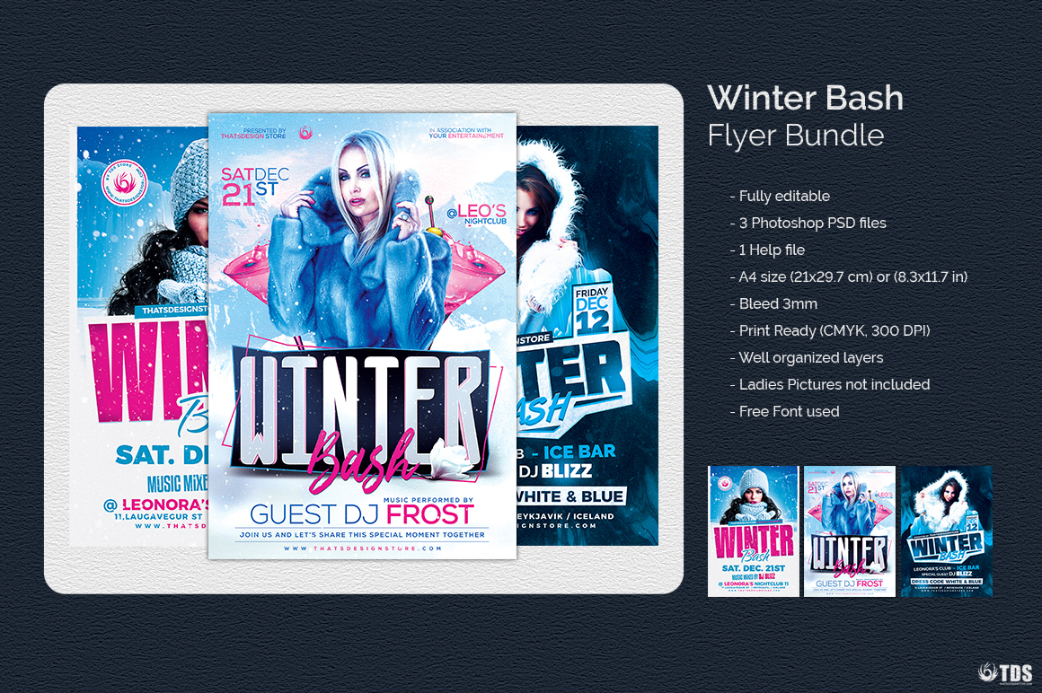 Winter Bash Flyer Bundle example image 5
